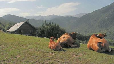Gîte de montagne le Pelioou en Ariège